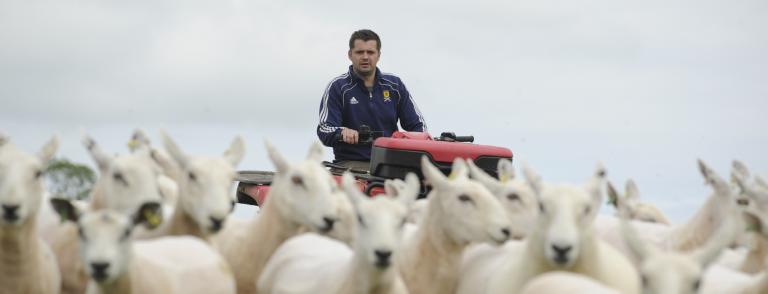 Sheep farmer on Quad bike